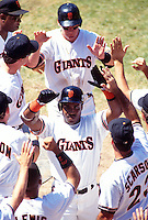 SAN FRANCISCO, CA - Barry Bonds of the San Francisco Giants is greeted by his teammates in front of the dugout at Candlestick Park in San Francisco, CA in 1993. Photo by Brad Mangin