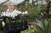 LONDON, ENGLAND - Royal Botanic Gardens, Kew, Tropical Extravaganza Festival 2011, Kew Diploma Student Anne Rostek