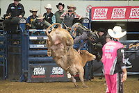 Chad VanAmburg attempts 230 Neon Nightmare of Soggy Hill Cattle Co. during the PBR Blue Def Tour event in Hampton, VA - 3.5.2016. Photo by Christopher Thompson