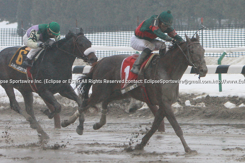 2011 02 05: Toby's Corner, with Eddie Castro aboard, wins the 32nd running of the Whirlaway Stakes for 3-year olds, at 1 1/16th mile, on the inner dirt track, Aqueduct Racetrack, Jamaica, NY. Trainer Graham Motion. Owner Diane D. Cotter