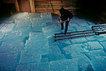 Stacking blocks of pond ice in the Thompson Ice House at the annual ice harvest, Bristol, Maine, USA