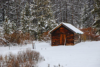 An old cabin high on Willow Creek Pass in Colorado greets a first snowfall in December.