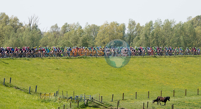 The peloton riding on top of a dike during Stage 3 of the 2016 Giro d'Italia running 190km from Nijmegen to Arnhem, The Nethrerlands. 8th May 2016.<br /> Picture: ANSA/Claudio Peri | Newsfile<br /> <br /> <br /> All photos usage must carry mandatory copyright credit (&copy; Newsfile | ANSA/Claudio Peri)