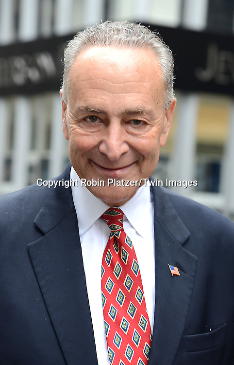Senator Chuck Schumer marchs in the 70th Annual Columbus Day Parade on October 13, 2014 on Fifth Avenue in New York City. <br /> <br /> photo by Robin Platzer/Twin Images<br />  <br /> phone number 212-935-0770