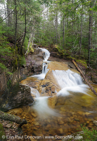Shell Cascade in Waterville Valley, New Hampshire during the spring months.This cascade is located on Hardy's Brook.