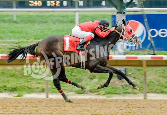 Coin of the Realm winning at Delaware Park on 8/25/12