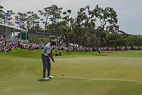 Tiger Woods (USA) watches his birdie attempt on 18 barely miss during round 3 of The Players Championship, TPC Sawgrass, at Ponte Vedra, Florida, USA. 5/12/2018.<br /> Picture: Golffile | Ken Murray<br /> <br /> <br /> All photo usage must carry mandatory copyright credit (&copy; Golffile | Ken Murray)