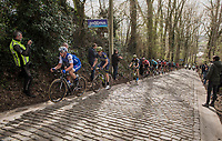 Yves Lampaert (BEL/QuickStep Floors) leading up the Taaienberg<br /> <br /> 72nd Dwars Door Vlaanderen (1.UWT)<br /> 1day race: Roeselare › Waregem BEL (203.4km)