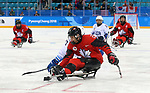 Pyeongchang, Korea, 18/3/2018-Brian Westlake compete in the gold medal ice game against the USA during the 2018 Paralympic Games. Photo: Scott Grant/Canadian Paralympic Committee.