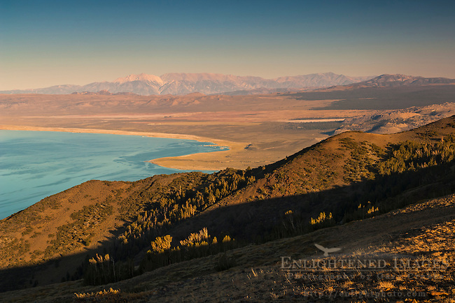 Overlooking Mono Lake at sunset looking toward the distant White Mountains; Eastern Sierra; Mono County; California