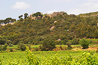 Domaine d'Aupilhac. Montpeyroux. Languedoc. The ruins of a chateau fortress. Garrigue undergrowth vegetation with bushes and herbs. Chateau de Castellas ruin. France. Europe. Vineyard.