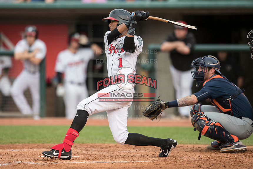 Lansing Lugnuts outfielder Edward Olivares (1) follows through on his swing during the Midwest League baseball game against the Bowling Green Hot Rods on June 29, 2017 at Cooley Law School Stadium in Lansing, Michigan. Bowling Green defeated Lansing 11-9 in 10 innings. (Andrew Woolley/Four Seam Images)