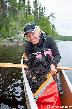 Family dog on canoe trip