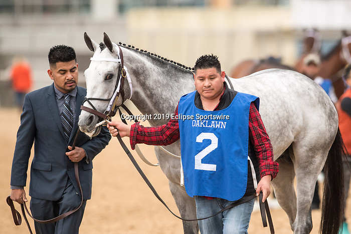 February 17, 2020: Silver Prospector (2) winning  the Southwest Stakes at Oaklawn Racing Casino Resort in Hot Springs, Arkansas on Feburary 17, 2020. Ted McClenning//Eclipse Sportswire/CSM