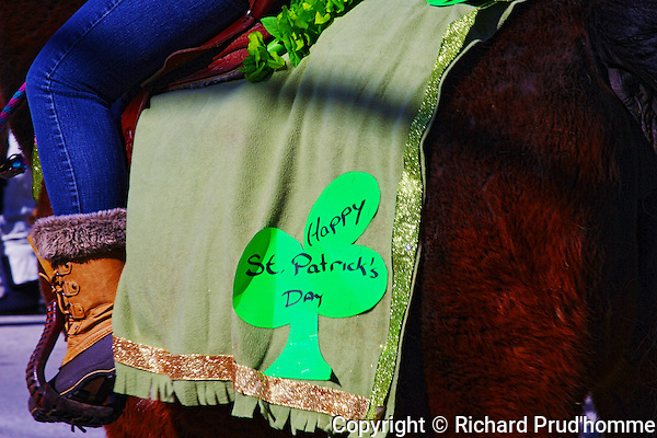 A Happy St. Patricks day sign on the side of a horse balnjet