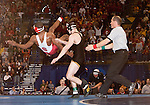 March 21 2009     Brent Metcalf from Iowa (black uniform) knocks down Darrion Caldwell from North Carolina State (white and red uniform) after the match was over and Caldwell was in midair, doing flips to celebrate his defeat of Metcalf in the 149 pound weight class in the championship round of the NCAA Division I  Wrestling Championships which were held March 19 through March 21, 2009 at the Scottrade Center in downtown St. Louis, Missouri.  Metcalf was being a sore loser...         *******EDITORIAL USE ONLY*******