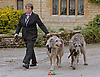 """IRISH WOLFHOUNDS OLLIE AND MISSY.ROBIN GIBB'S FUNERAL.Robin who died after a lon-running battle with cancer aged 62, was buried at St. mary's Church , Thame, Oxfordshire..Brother Barry Gibb,65, the last surviving member of the Bee Gees was joined by family members for the funeral service..Celebrity guests who attended the funeral included Peter Andre, Tim Rice, Susan George and Leslie Phillips_08/06/2012.Mandatory Credit Photo: ©NEWSPIX INTERNATIONAL..**ALL FEES PAYABLE TO: """"NEWSPIX INTERNATIONAL""""**..IMMEDIATE CONFIRMATION OF USAGE REQUIRED:.Newspix International, 31 Chinnery Hill, Bishop's Stortford, ENGLAND CM23 3PS.Tel:+441279 324672  ; Fax: +441279656877.Mobile:  07775681153.e-mail: info@newspixinternational.co.uk"""