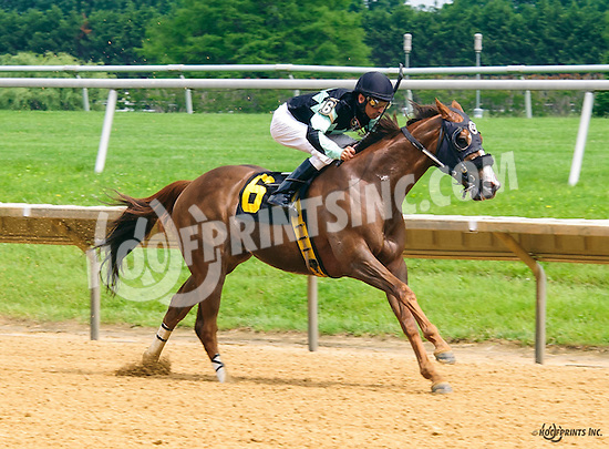 Magic Lion winning at Delaware Park on 6/4/16