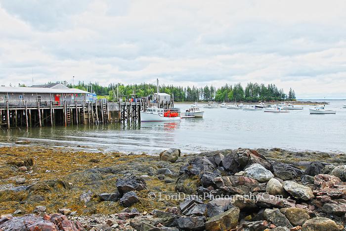 Boats at Owl's Head Wharf