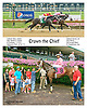 Crown the Chief winning at Delaware Park on 8/24/15