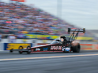 Mar 16, 2019; Gainesville, FL, USA; NHRA top fuel driver Dom Lagana during qualifying for the Gatornationals at Gainesville Raceway. Mandatory Credit: Mark J. Rebilas-USA TODAY Sports