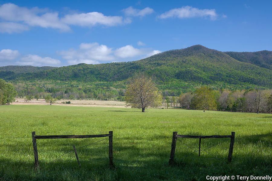 Great Smoky Mts. National Park, TN/NC<br /> Fence and open meadow - Cades Cove