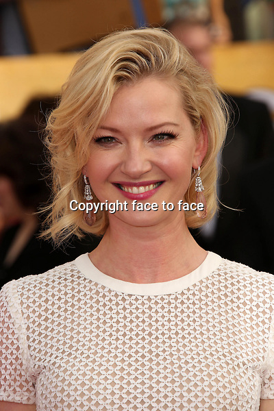 LOS ANGELES, CA - January 18: Gretchen Mol at the 20th Annual Screen Actors Guild Awards Arrivals, Shrine Auditorium, Los Angeles, January 18, 2014. <br />