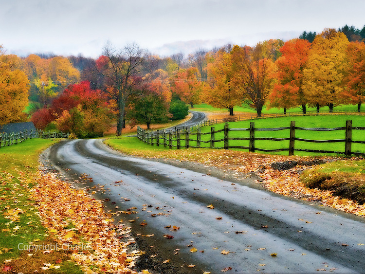 Brilliant fall foliage along a winding stretch of Galaxy Hill road, Vermont.  Digitally enchanced.