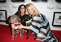 Josh Wolf05 November 2017 - Hollywood, California - Rebecca Corry, Kaley Cuoco. 7th Annual Stand Up For Pits held at Avalon Hollywood. <br /> CAP/ADM/FS<br /> &copy;FS/ADM/Capital Pictures