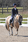 25/03/2016 - Class 6 - British Dressage - Brook Farm Training Centre