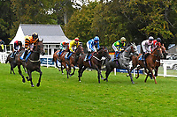 The field make their way from the start of The St Christopher's Car Sales Bournemouth Supporting Gift Of Sight Handicap during Evening Racing at Salisbury Racecourse on 3rd September 2019