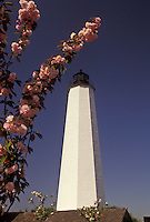 AJ3506, New Haven, lighthouse, Connecticut, Cherry blossoms surround the lighthouse on Lighthouse Point in the spring in New Haven in the state of Connecticut.