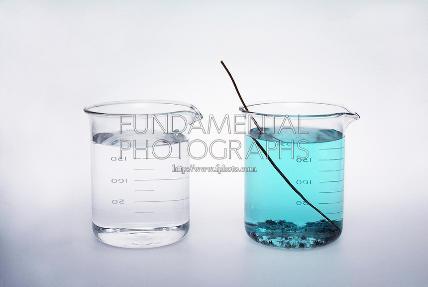 COPPER WIRE IN SILVER NITRATE SOLUTION<br /> Displacement Reaction<br /> Comparison of 2 Silver Nitrate Solutions. When copper is placed in a solution of AgNO3 (right), a displacement reaction occurs resulting in solid silver crystals &amp; a Copper Nitrate solution.