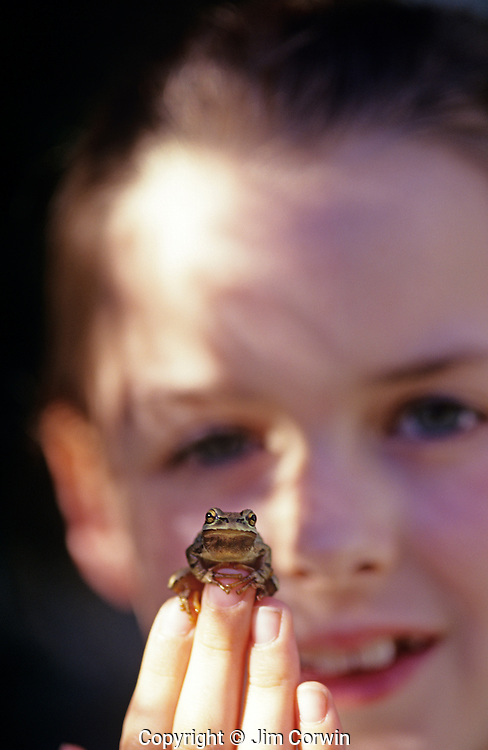 Green tree frog on young girls fingers