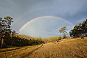 Double rainbow over forest. Tasmania. Australia.