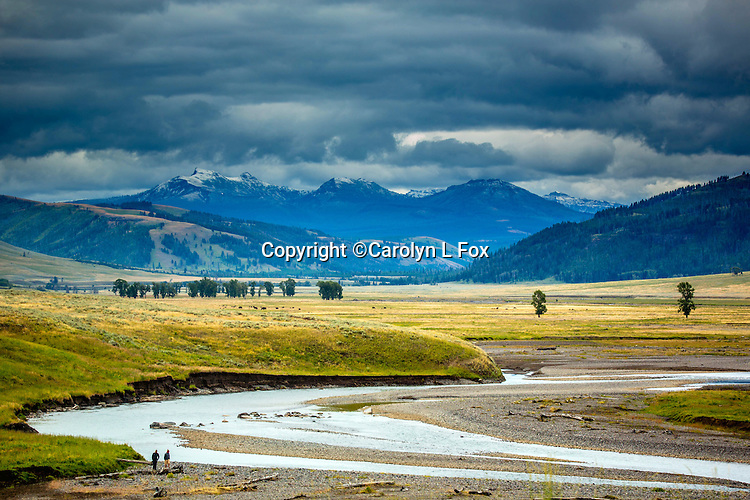 The river winds towards mountains in Yellowstone.