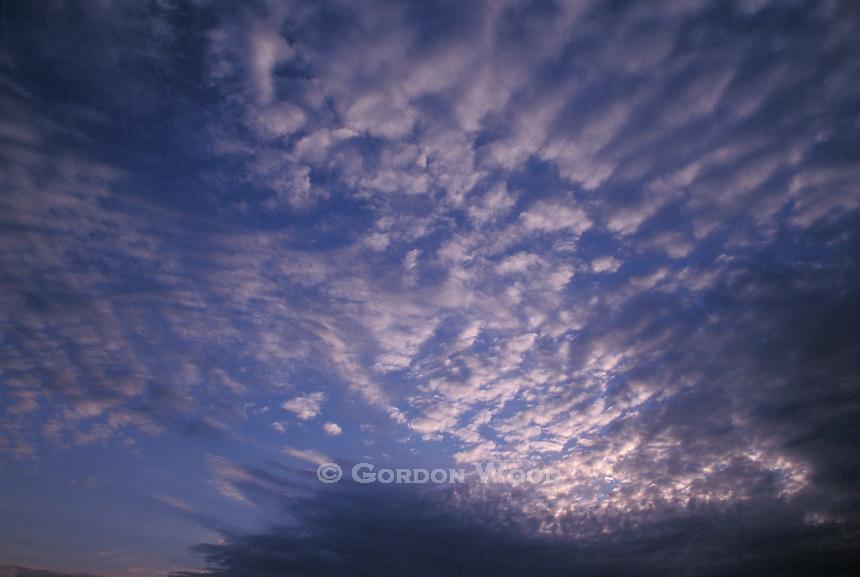 Altocumulus Clouds forming Mackerel Sky at Sunset