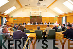 At  the first Meeting of Kerry County Council at the council Chambers on Friday.