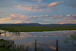 Idaho South Central, Fairfield. Evening light over the camas fields of the Centennial Marsh in spring.