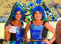 Costume Catwalk winners on Day Two of the 2016 HSBC Wellington Sevens at Westpac Stadium, Wellington, New Zealand on Sunday, 31 January 2016. Photo: Joseph Johnson / lintottphoto.co.nz