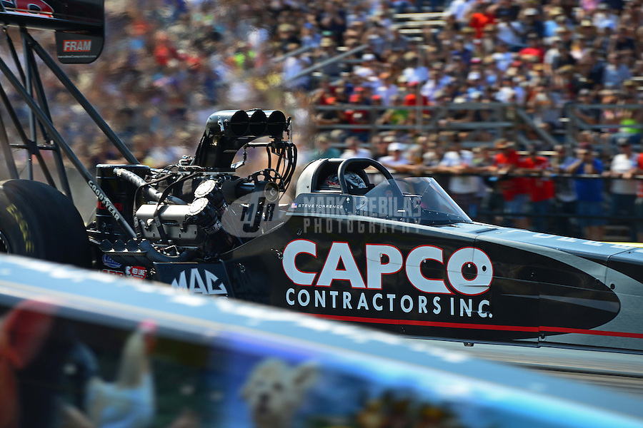 Sept. 21, 2012; Ennis, TX, USA: NHRA top fuel dragster driver Steve Torrence during qualifying for the Fall Nationals at the Texas Motorplex. Mandatory Credit: Mark J. Rebilas-