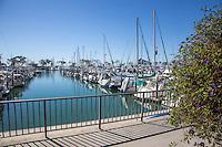 Boats Docked at the Dana Point Harbor