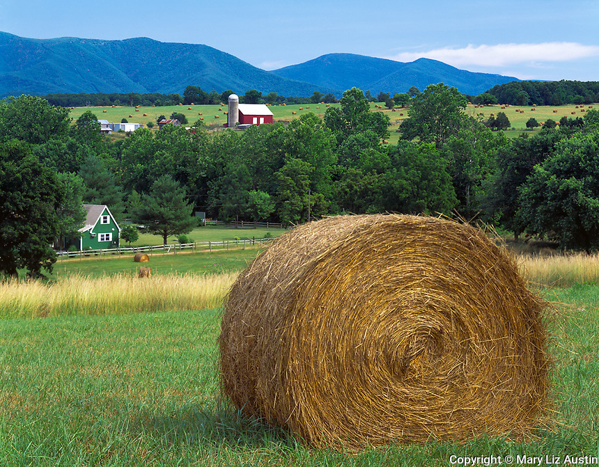 Page County, VA<br /> A high pasture with hay bales overlooks the rolling fields and farms of the Shenandoah Valley with the Shenandoah Mountains in the distance