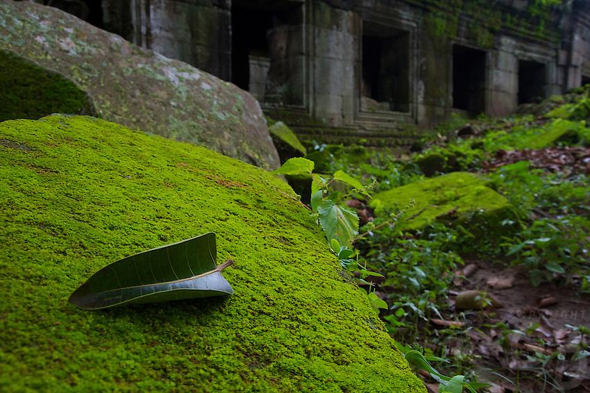 Rainy seasion Preah Khan Temple Siem Reap, Cambodia