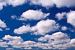 Cumulus clouds blue sky
