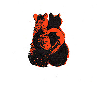 Two cats side by side with tails forming heart shape