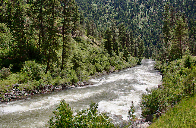 Idaho, Southwest, Banks. The North Fork of the Payette River in late spring.