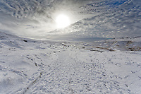 WEATHER PICTURE WALES<br /> Pictured: The snow covered Black Mountains near Brynamman, Wales, UK. Wednesday 23 January 2019