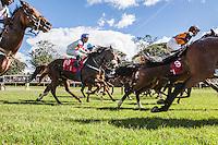 Horses at the start o fthe Kenya Derby at the Ngong Racecourse. Lesley Sercomb won the race riding the horse Westonian.Nairobi, Kenya. April 14, 2013. Brendan Bannon