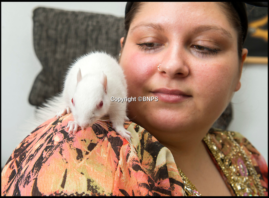 BNPS.co.uk (01202 558833)<br /> Pic: PhilYeomans/BNPS<br /> <br /> Folly Wildlife Rescue volunteer Poppy Velosa-Ayres has nursed the rare creature back to health.<br /> <br /> All white now - lucky white squirrel is saved from an early grave.<br /> <br /> Two weeks ago this rare albino squirrel was at death's door - but the fluffy little fighter is doing all-white now.<br /> <br /> The unusual-coloured critter was found by the RSPCA in a waterlogged cardboard box, shivering and with a bloody face.<br /> <br /> Wildlife rescue workers thought she would not survive but the squirrel, now called Polly, has defied the odds and is fighting fit.<br /> <br /> Poppy Velosa-Ayres, a foster carer for Folly Wildlife Rescue, thinks Polly was rejected by her mother and pushed from the nest because of her pale fur, which would make her an easy target for predators.